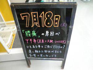 CIMG3456
